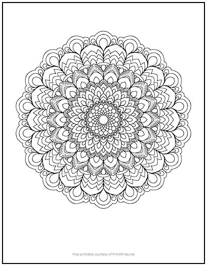 Fancy Flower Mandala Coloring Page Print It Free